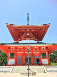 根本大塔の写真・画像素材[1302402]