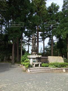 成相寺の写真・画像素材[1318161]