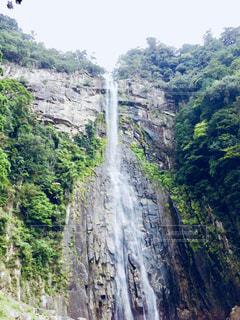 那智の滝の写真・画像素材[1322358]