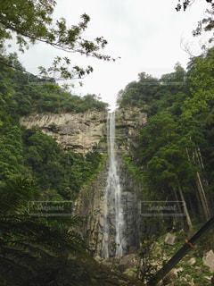 那智の滝の写真・画像素材[1322359]