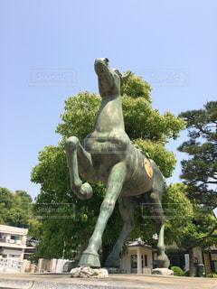 水間寺の献馬の写真・画像素材[1322367]