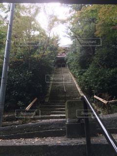 観音寺に上がる階段の写真・画像素材[1327024]