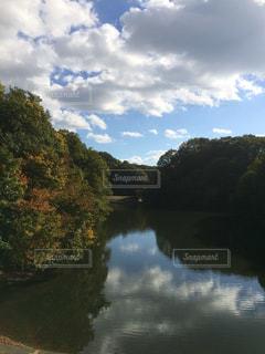 府民の森 室池の写真・画像素材[1327028]