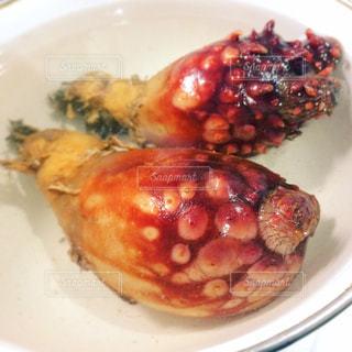 ホヤ貝の写真・画像素材[1300272]