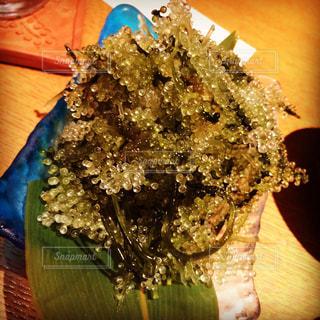 沖縄の海ぶどうの写真・画像素材[1302563]