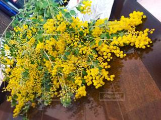ミモザの花束の写真・画像素材[1868617]