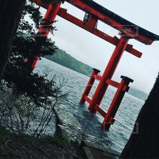 箱根神社の写真・画像素材[1297123]
