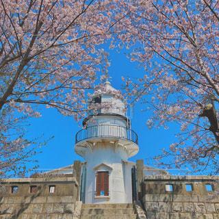 灯台と桜の写真・画像素材[1969918]