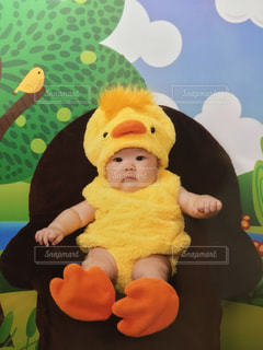 赤ちゃんのぬいぐるみを保持の写真・画像素材[1299156]