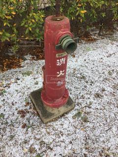 赤い消火栓の写真・画像素材[1309392]