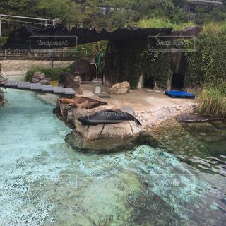 水の大きなプールの写真・画像素材[1362121]