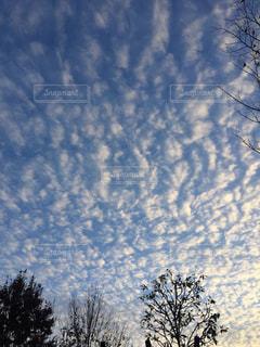 雲の写真・画像素材[1712166]