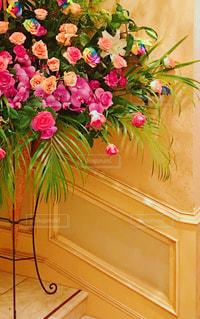 レインボーカラーのバラの写真・画像素材[1315750]