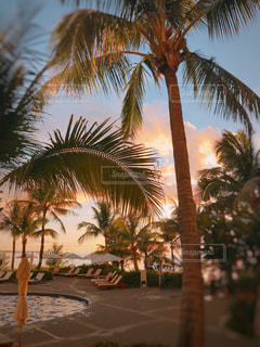 夕日に染まる景色の写真・画像素材[1328045]