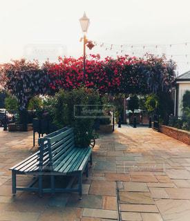 ベンチと花の写真・画像素材[1344116]