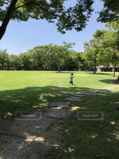 1歳児の公園遊びの写真・画像素材[1302490]