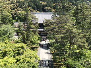 京都 南禅寺の写真・画像素材[1302641]