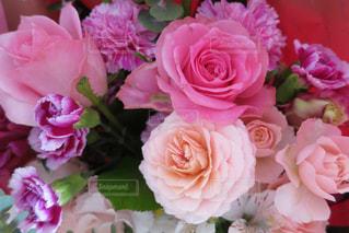 バラの花束の写真・画像素材[1306058]