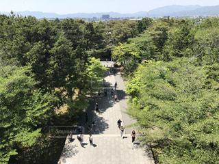 南禅寺の参道の写真・画像素材[1313949]