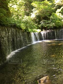 滝の水の体の上に行くの写真・画像素材[1306146]