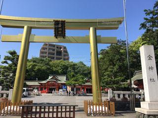ゴールドの鳥居、金神社の写真・画像素材[1443397]