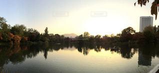 夕暮れ時の紅葉の景色の写真・画像素材[1353133]