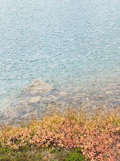 旭岳鏡池の写真・画像素材[1496736]