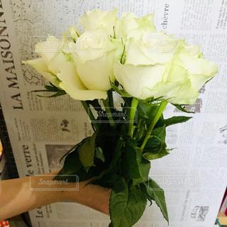 白バラの花束の写真・画像素材[1716007]
