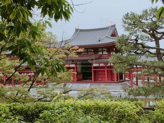 建物の前にツリーの写真・画像素材[1305723]