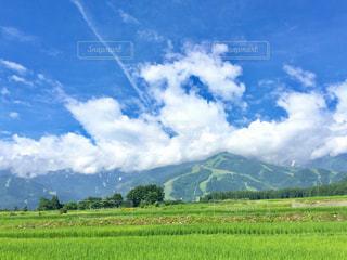 背景の山に大規模なグリーン フィールドの写真・画像素材[707524]