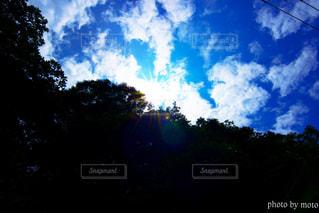 空の雲の写真・画像素材[1359011]