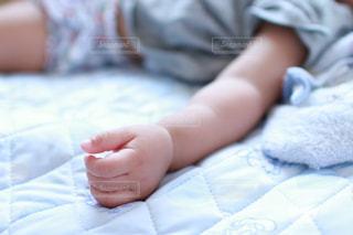 小さな手の写真・画像素材[1413133]