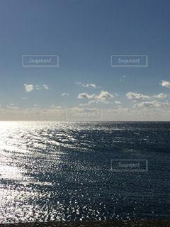 黒潮の穏やかな水面の写真・画像素材[1309964]
