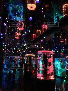 水槽のライトアップの写真・画像素材[1309518]