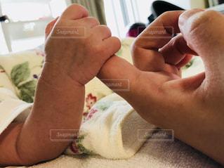 赤ちゃんの手の写真・画像素材[1309883]
