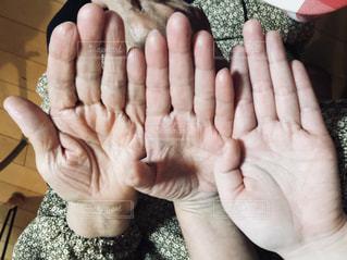 三世代の手の写真・画像素材[1310401]