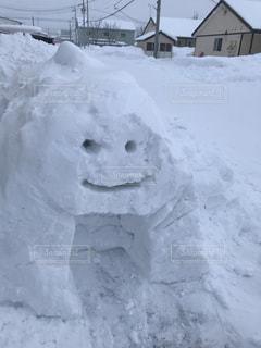 雪に覆われた家の写真・画像素材[1309535]