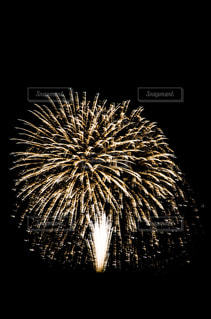 空に花火の写真・画像素材[1310621]