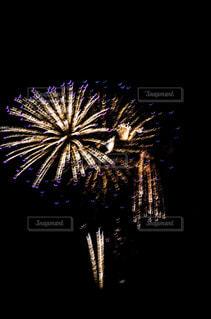 空に花火の写真・画像素材[1310630]
