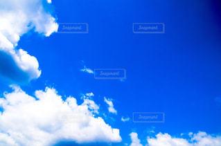 青い空の写真・画像素材[1431289]