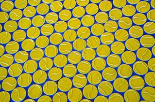 テニスボールの写真・画像素材[1440493]