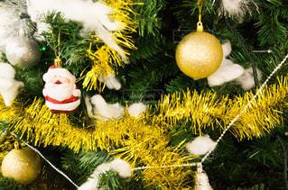 クリスマスツリーの写真・画像素材[2757347]