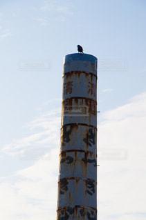 カラスと煙突の写真・画像素材[2790471]