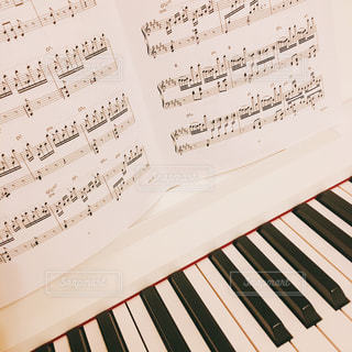 ピアノレッスン1の写真・画像素材[1311780]
