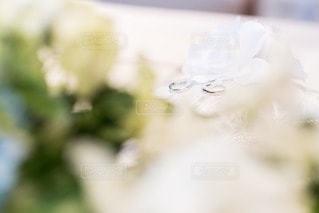 指輪の写真・画像素材[45006]
