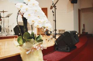 テーブルの上の花の花瓶の写真・画像素材[1312959]