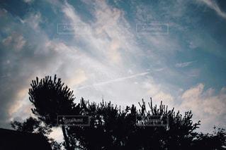 飛行機雲の写真・画像素材[1321491]