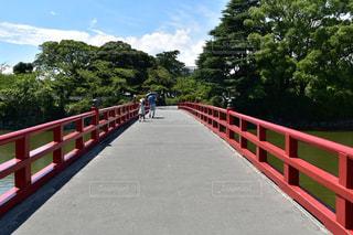 小田原城学橋の写真・画像素材[1383926]