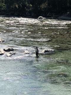 鮎釣りの写真・画像素材[1475571]