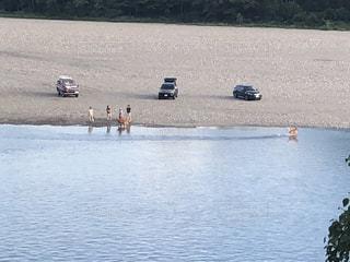 河原で遊ぶ人と犬の写真・画像素材[1475574]